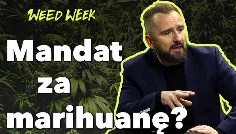 WeedWeek #17 - czyli liroy o mandacie za posiadanie marihuany