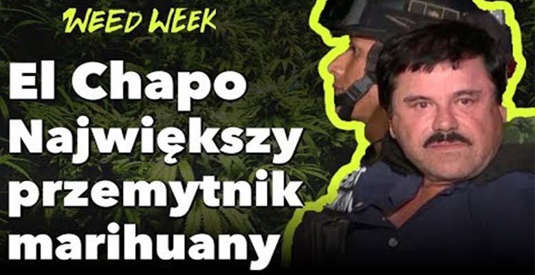 Weed Week 20 - El Chapo