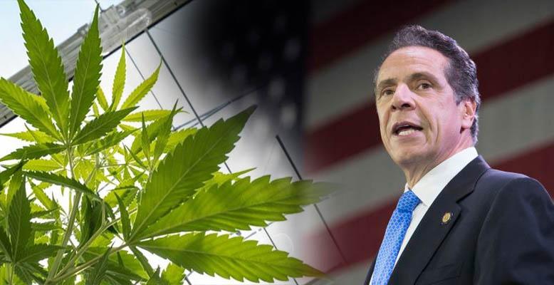 Andrew Cuomo uczynił legalizację marihuany rekreacyjnej dla dorosłych głównym celem na pierwsze 100 dni swojej nowej kadencji.