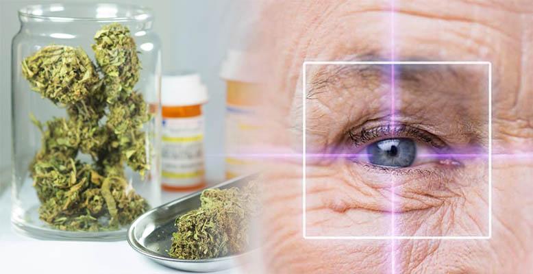 Leczenie jaskry medyczną marihuaną - THC czy CBD będzie bardziej skuteczne?