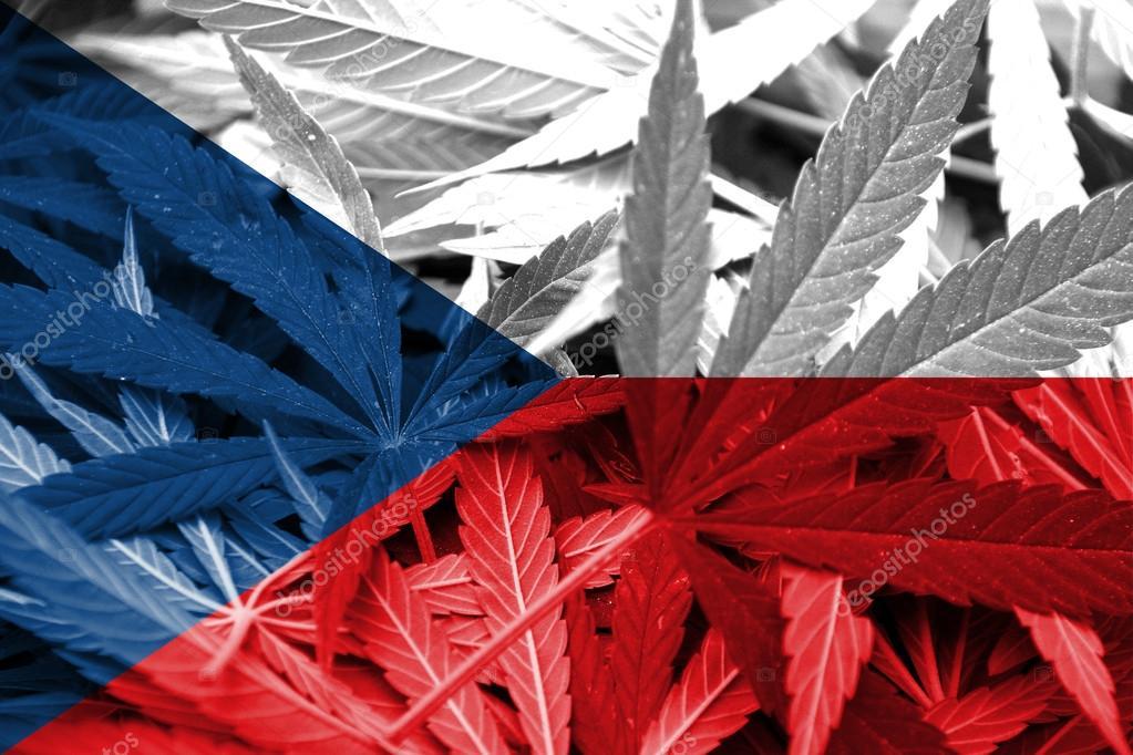 Czechy: Ministerstwo Zdrowia proponuje 90-cio procentową refundację medycznej marihuany