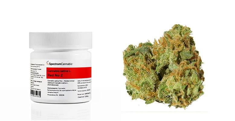 Red No 2 medyczna marihuana już dostępna w aptekach