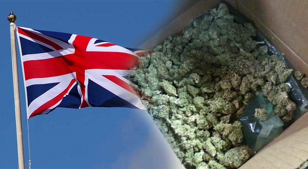 Pierwsza dostawa medycznej marihuany trafiła do Wielkiej Brytanii