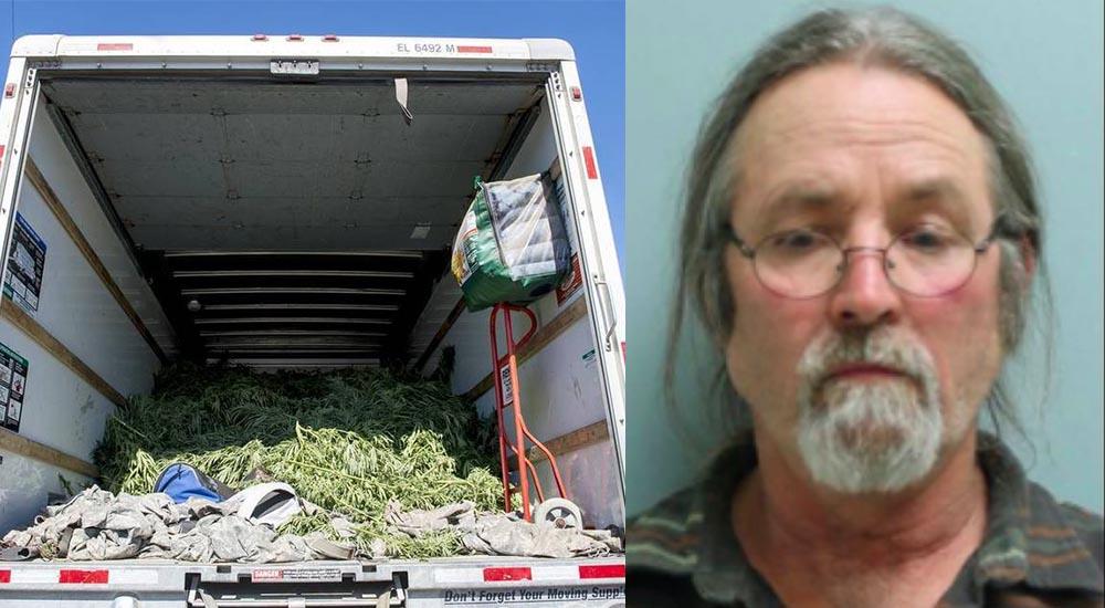 Mężczyzna jechał zbyt wolno i został zatrzymany przez policję. Okazało się, że przewozi 250 kilogramów marihuany