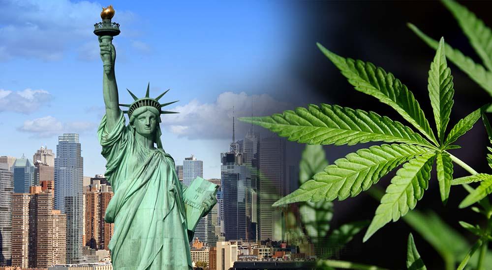 głosowanie za legalizacją marihuany w Nowym Jorku odbędzie się 1 kwietnia