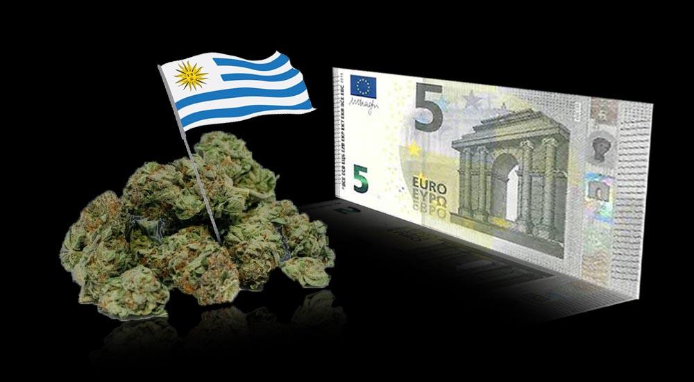 Urugwaj podnosi ceny marihuany o 3,3%