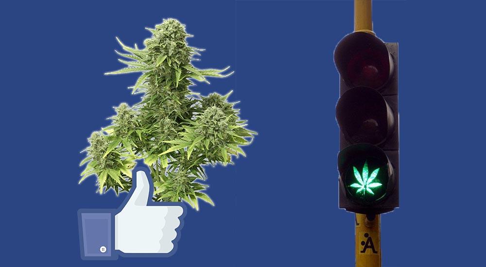 Facebook złagodzi przepisy dotyczące marihuany na platformie społecznościowej