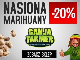 Nasiona Marihuany Ganja Farmer