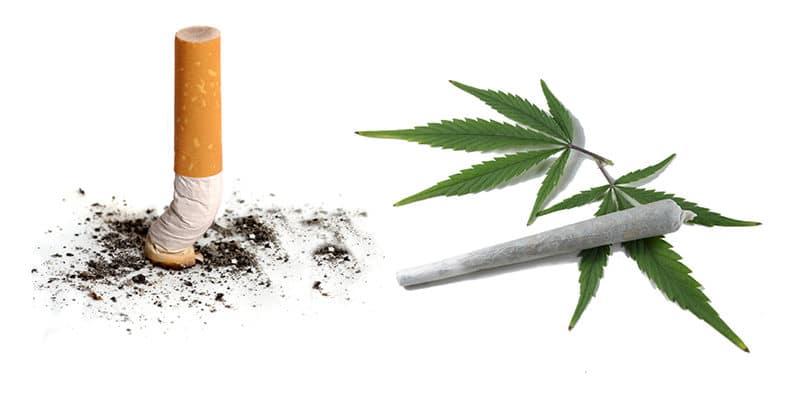 Róznice między paleniem marihuany a paleniem papierosów