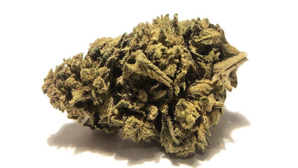 Cannabis Light we Włoszech może mieć problemy. Minister Spraw Wewnętrznych zapowiedział wojnę