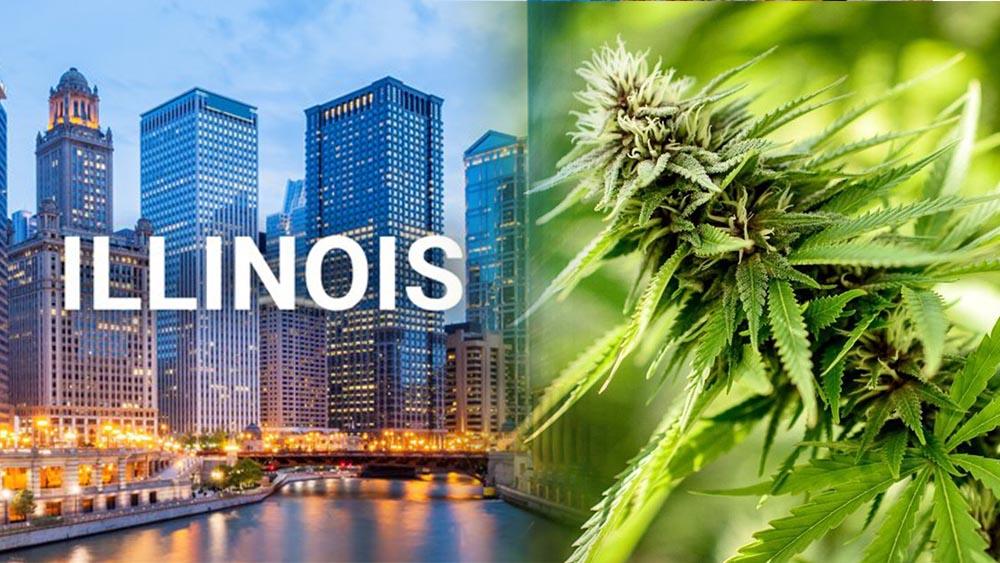 Stan Illinois zalegalizował marihuanę do celów rekreacyjnych