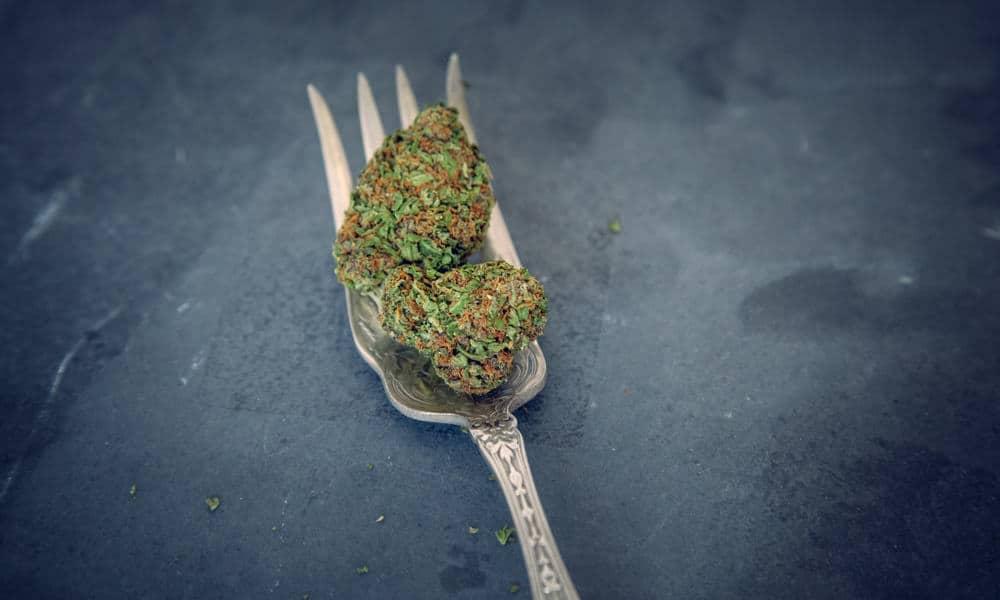 Mężczyzna twierdził, że żywi się marihuaną, którą popija olejem