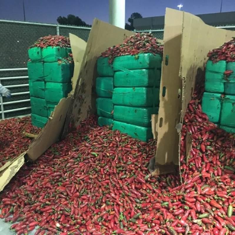 4 tony marihuany wśród papryczek jalapeno