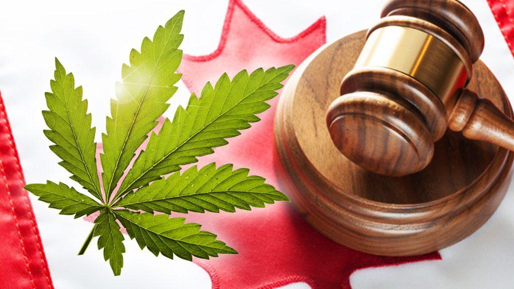 Kanada rozpoczyna przyjmowanie wniosków o ułaskawienie za posiadanie marihuany