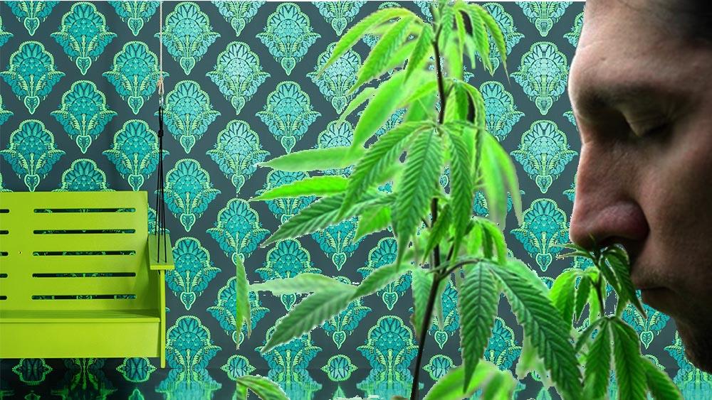 Tapeta o zapachu marihuany