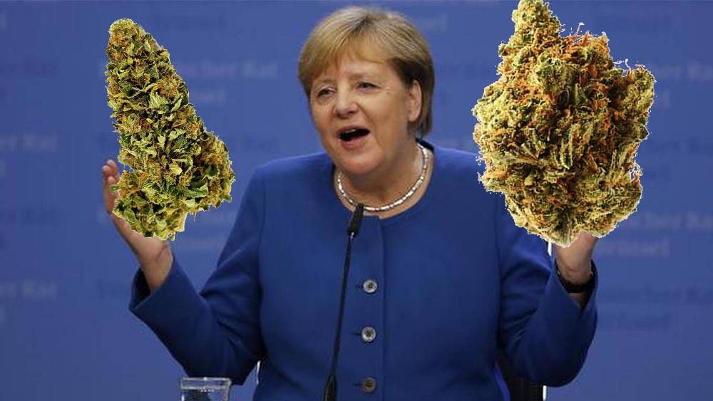Partia Angeli Merkel za legalizacją marihuany