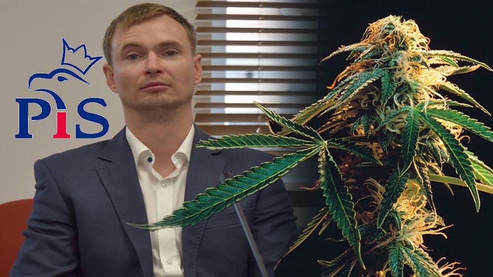 Radny Pis - Jacek Stronka oskarżony o posiadanie marihuany