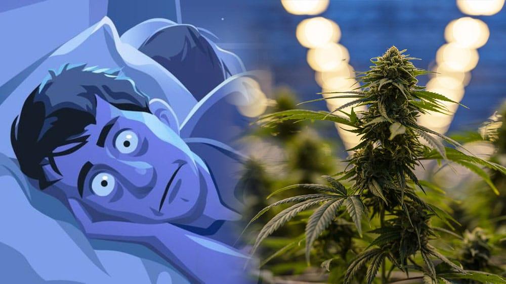 Dostęp do marihuany a sprzedaż środków nasennych