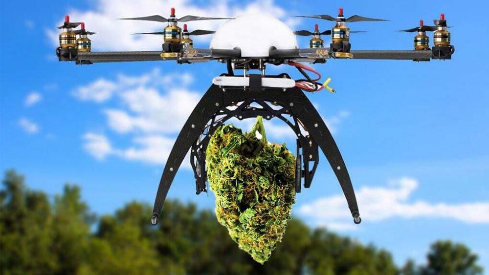 Firma z Seattle będzie dostarczać marihuanę dronami