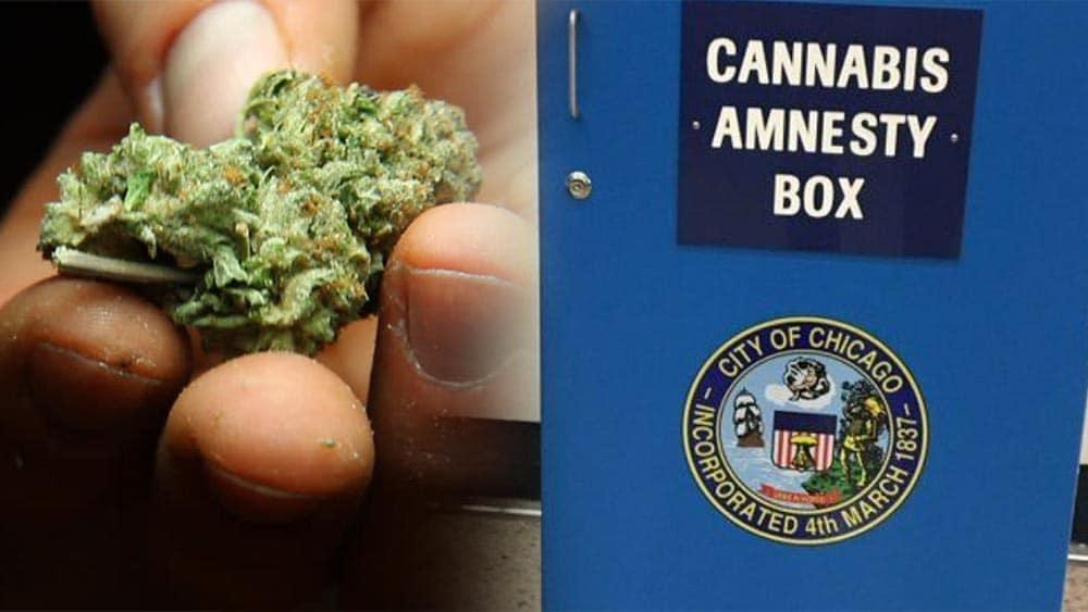 Pudełka na marihuanę na lotniskach w Chicago