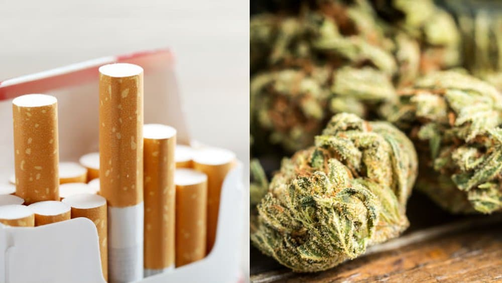 Wpływ palenia marihuany i papierosów na DNA