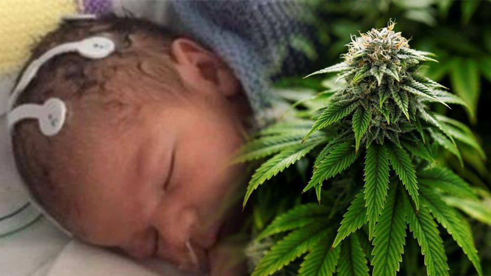 Najmlodszy pacjent na świecie weźmie udział w badaniach nad medyczną marihuaną