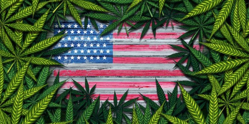 Arizona, montana, new jersey i południowa dakota zalegalizuja marihuane