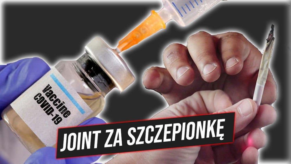 Joint za szczepionkę - aktywiści będą rozdawać marihuanę osobom, które zaszczepią się przeciwko COVID-19